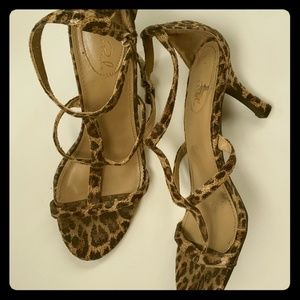 Animal print strap sandals by studio Paolo